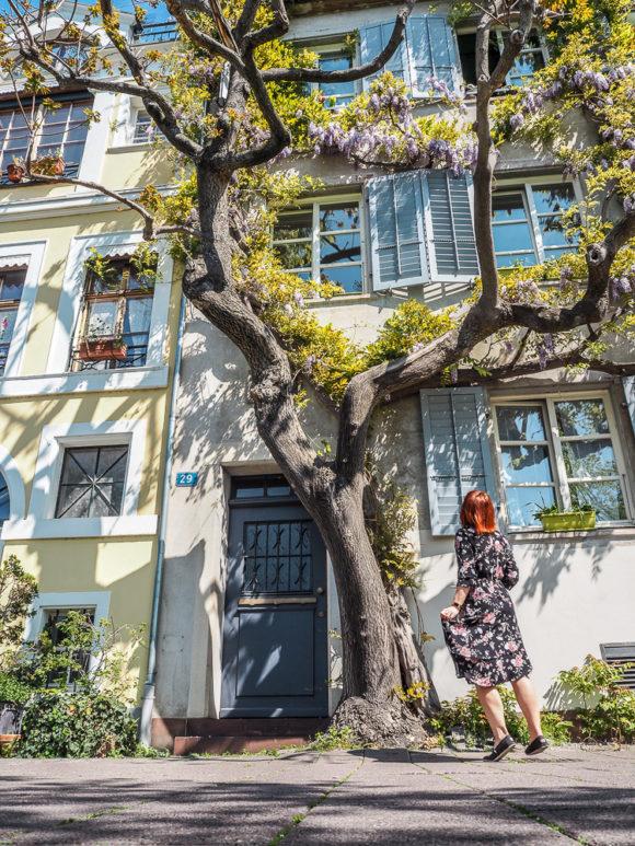 Bazylea – piękny, wiosenny city break
